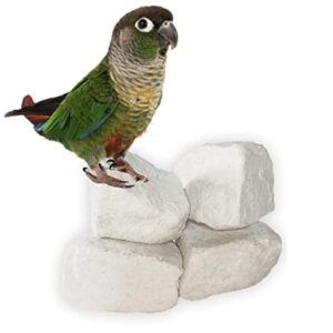 Natural Mineral Block for Birds